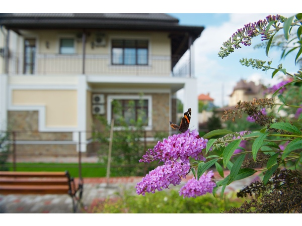 Как быстро найти лучший дом престарелых